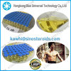 Bodybuilding Injectable Anabolic Steroids Testosterone Cypionate 250 for Fat Loss