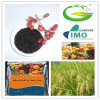 High Concentrated Algae Kelp Source Organic Extract Seaweed Fertilizer