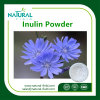 Factory Supply   Hot Sale 100% Pure Chicory Extract Inulin Powder  / CAS:   9005-80-5