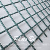 Green Color Welded Wire Mesh