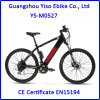 Crossbart Electric Mountain Bike with Down Tube Battery