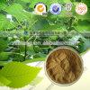 Olive Leaf Extract 20 Oleuropein Price 25%