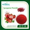 Hight Quality Tomato Extract Antioxidant 5% 10% Lycopene
