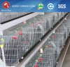 Cage for Broiler Breeder Farming in Nepal