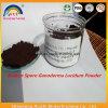 Ganoderma Lucidum Extract Powder; Ganoderma Lucidum Spore Powder Bulk Powder