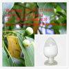 Factory Direct Supply Camphor CAS: 8008-51-3