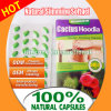 Hoodia Cactus Slimming Softgel Weight Loss Capsules