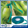 Stretch Tie Tape for Horticulture