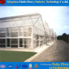 High Quality Multi Span Glass Greenhouse with Hydroponic System