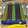 Aoqi New Design Factory Price Inflatable Climbing Ladder (AQ16341)