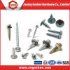 Variety Kinds of Self Drilling Screw