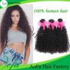 High Quality 8A Unprocessed Human Remy 100% Human Hair Bulk