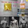High Purity Steroid Hormone Base / Boldenone Undecylenate CAS: 13103-34-9