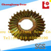 DIN ANSI Standard Spiral Bevel Worm Helical Differential Gear for Transmission Gearbox