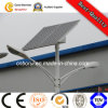 Professional Customized 30W Solar Street Light with Pole