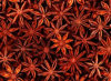 New Crop/High Quality Star Anise