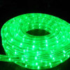 48m LED 2 Wire Chasing Rope Light