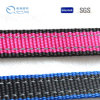 Wholesale Colorful Polyester Webbing for Sale