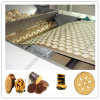 Automatic Hard and Soft Biscuit Processing Machine