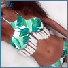 Fashion Sexy Girl Bikini Swimsuit Two Piece Wholesale