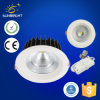 Top Grade Long Life Ce, RoHS COB LED Down Light