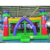 Top Quality Popular Inflatable Jumpers House/Kids Funny Inflatable Bouncer House
