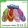 Ladies Wedge Heel Women Sport Flip-Flops (RW22916)