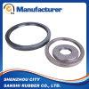 Framework Tg Oil Seals for Industry Machine