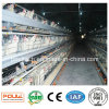 Factory Supplied Automatic Layer Chicken Cage for Poultry Farm