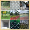 Galvanized/PVC Coated Chain Link Fence (Factory)