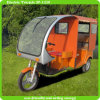 2014 Hot-Selling EEC Trike with 5 Piece Batteries