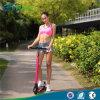 The World Lightest Folding Kick Scooter 350W 24V Electric Scooter