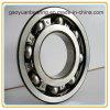 NSK Bearing/Deep Groove Ball Bearing (6213)