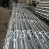 Steel Ringlock Scaffold for Construction