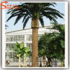 Artificial Date Palm Tree for Garden Decoration