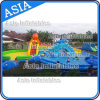 Outdoor Octopus Theme Playground Inflatable Water Park, Commerical Inflatable Water Slide