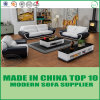Classical Loveseat Sectional Sofa Leisure Modern Furniture Set