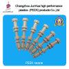 Peek Nozzle--Jiangsu Jun Walt Plastic