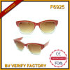 F6925 New Products Shinny Transperent Sunglasses
