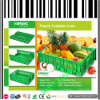 Collapsible Plastic Crates for Vegetable and Fruit