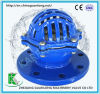 Flange End Ductile Cast Iron Foot Valve (H42)
