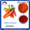 Natural Organic Carrot Extract Beta Carotene Powder