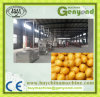 Pertreatment High Quality Lemon Washing Machine