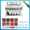 Color Sorter, Selector, Grader for Various Beans, Seeds