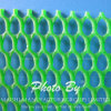 Extruded PP Netting
