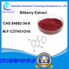 Bilberry Extract CAS No 84082-34-8