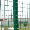 PVC Coated Welded Holland Wire Mesh Fence/ Euro Fence