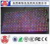 High Quality X10 Indoor Colorful Screen LED Display Sign High Brightness