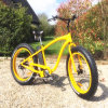 Chinese 26inch Green Power Fat Tire Snow Electric Bike