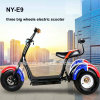2018 Harley Citycoco Electric Tricycle with 1000W Shaft Motor for Adult